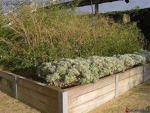 Bac Bois Potager : bac en bois pour jardin apprendre demain ~ Melissatoandfro.com Idées de Décoration