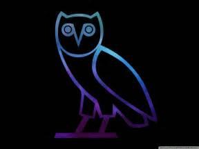 Ovo Owl Wallpaper HD Desktop