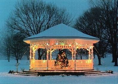 logged netted christmas trees in manchester gazebo manchester and parks on