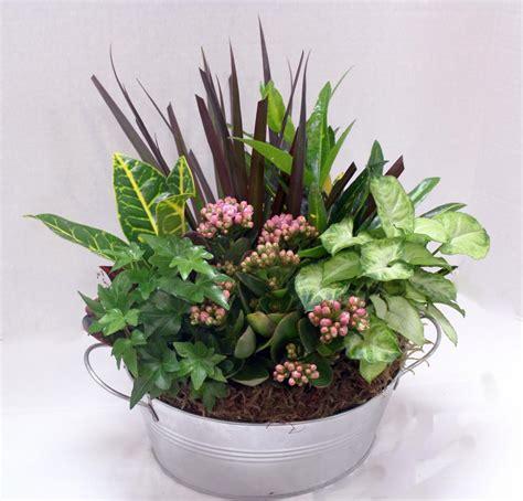 dg1005 10 quot dish garden johnson floral decorjohnson