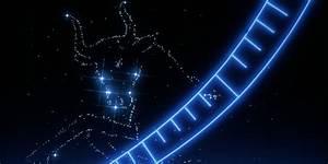 Sternzeichen Stier Monat : sternzeichen stier horoskop der woche 49 ~ Markanthonyermac.com Haus und Dekorationen