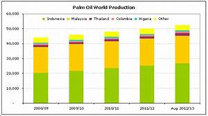 Top Ten Largest Palm Oil Producing Countries in the World