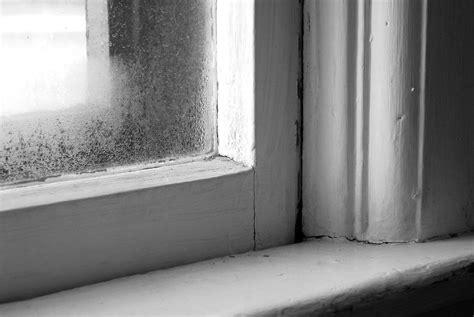 condensation   double glazing   hair dryer   home hacks albany windows