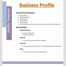 Company profile template microsoft publisher office manual template gallery of company profile template microsoft publisher 2 business profile templatefree word templates maxwellsz