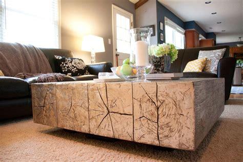 cozy contemporary living room  coffee table