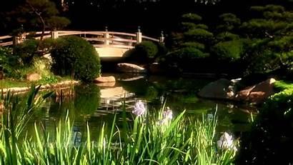 Garden Zen Meditation Mindfulness Flowers Relaxation Length