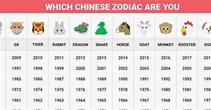 Animal Month Chart Learn How Your Chinese Zodiac Sign Affects Your Life