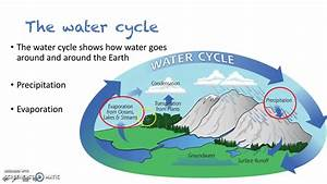 floods and the water cycle
