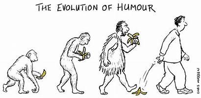 Humour Evolution Humor Cartoon Funny Human Ulysse
