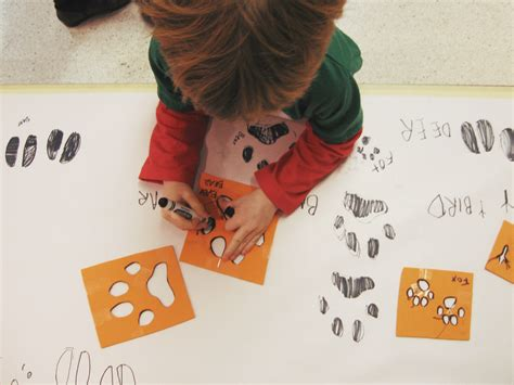 animals in winter preschool science and math 906 | preschoolscience dec12 05 1