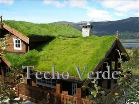 Techo Ecológio  Techo Verde Youtube