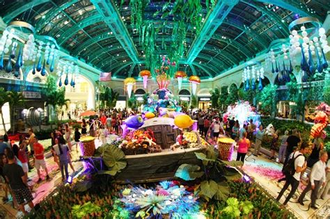 bellagio conservatory unveils undersea display for summer