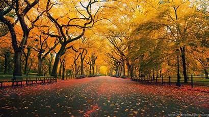 Autumn Desktop Late Widescreen Wallpapers Themes Background