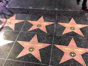 street artist covers hollywood walk  fame