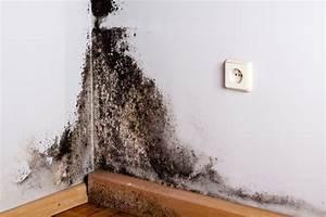 Luftfeuchtigkeit In Der Wohnung : thermopenfenster sind innen nass ~ Lizthompson.info Haus und Dekorationen