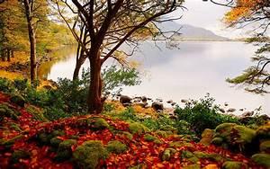 Beautiful, Fall, Scenery, Wallpaper, 49, Images