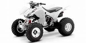 Pay For Honda Trx300ex Sportrax Service  U0026 Repair Manual  2001 2002 2003 2004 2005 2006