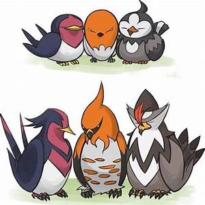Taillow/Swellow, Fletchling/Talonflame, Starly/Staraptor ...