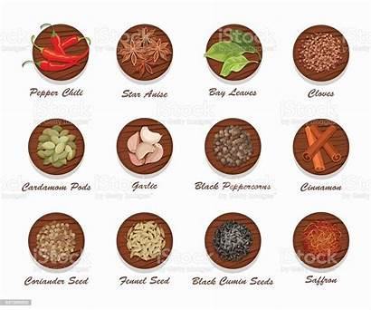 Spices Kinds Different Board Vector Realistic Condiments