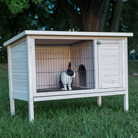 where to buy rabbit hutch boomer george elevated outdoor rabbit hutch white wash