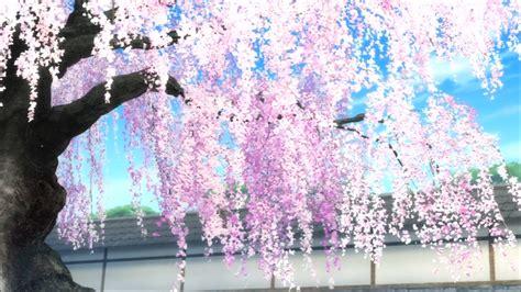 Anime Tree Wallpaper - anime cherry blossom wallpaper wallpapersafari