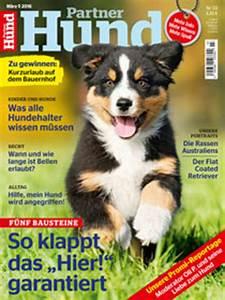 Partner Hund Abo Kündigen : so klappt es mit der vogelzucht ein herz f r tiere magazin ~ Lizthompson.info Haus und Dekorationen