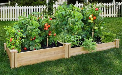 7359 greenes raised beds how to assemble and design greenes raised garden bed