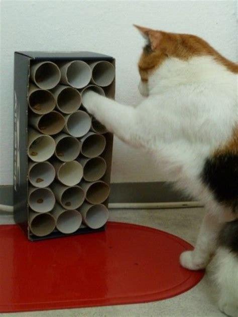 katzenspielzeug basteln ideen alles f 252 r die katz fritzis katzenpension cats diy