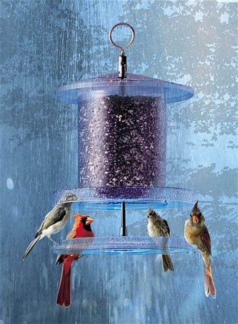 weatherproof  weather bird feeder clear  quart