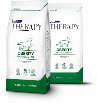 Obesity Therapy Management Canine Vital Mobility Aid
