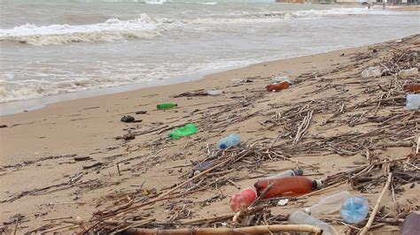 Sea Ocean Water Pollution The Bottle Rubbish Ecology