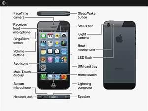 Diagram Parts Of A Phone