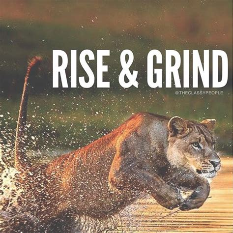 rise grind pictures   images  facebook