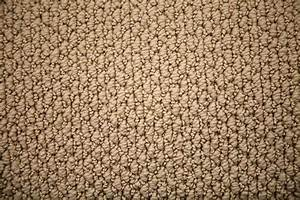 Carpet types styles and uses loop random sheer plush for Types of berber carpet