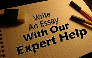 expert essay writer