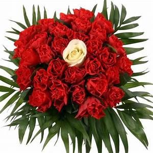 Blumen Verschicken Auf Rechnung : blumen per kauf auf rechnung ~ Themetempest.com Abrechnung