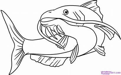 Catfish Coloring Cartoon Clip Drawings Clipart Clipartion