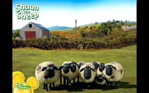 Shaun The Sheep Wallpaper Wallpapersafari