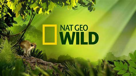 National Geo Wild Natgeo Wild  Driverlayer Search Engine