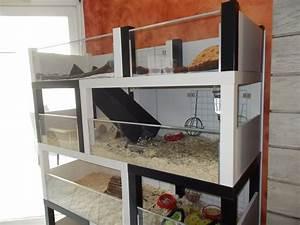 Cage A Cochon D Inde : un meuble cochon d 39 inde fabriquer petit prix ~ Dallasstarsshop.com Idées de Décoration