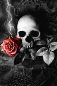 Skulls Rose Live Wallpaper for Android | Skull's ...