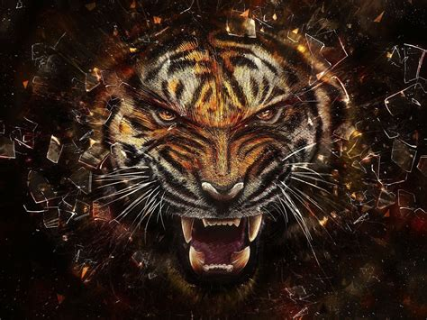 Animated Tiger Wallpaper - animated tiger wallpaper 56 hdwallpaper20