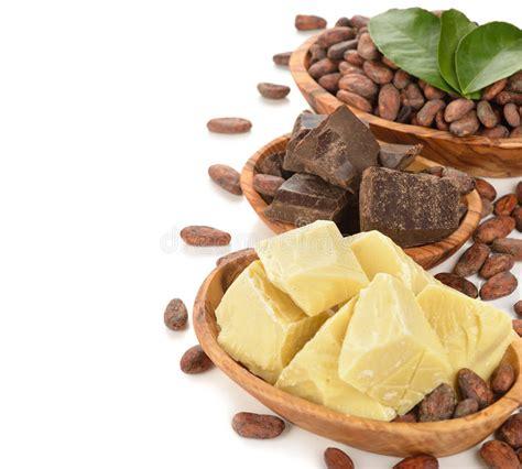 cocoa beans cocoa butter  cocoa mass stock photo