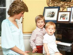 William, Harry and Kate vow to continue Diana's charitable ...