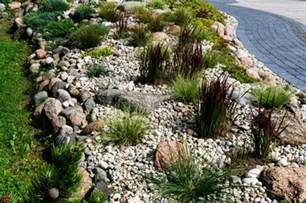 killing grass  rock ground cover thriftyfun