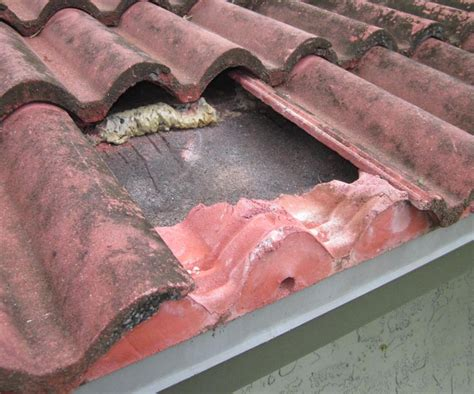 replacing bottom row roof tile