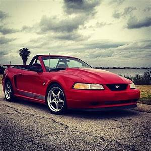 SOLD - 1999 Mustang Gt Convertible Steeda Q400 Serial 99-19 $15000 | Mustang Forums at StangNet