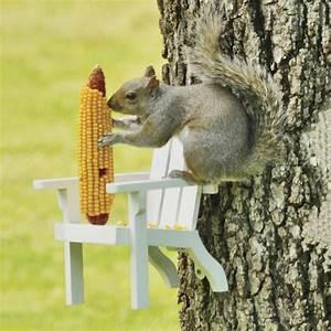 Adirondack Chair Squirrel Feeder - The Green Head