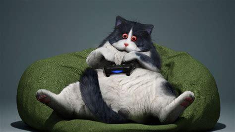Download Wallpaper 1920x1080 Cat Gamepad Funny Cool
