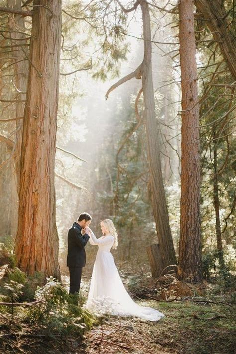 Wedding Photography Forest Best Photos Cute Wedding Ideas